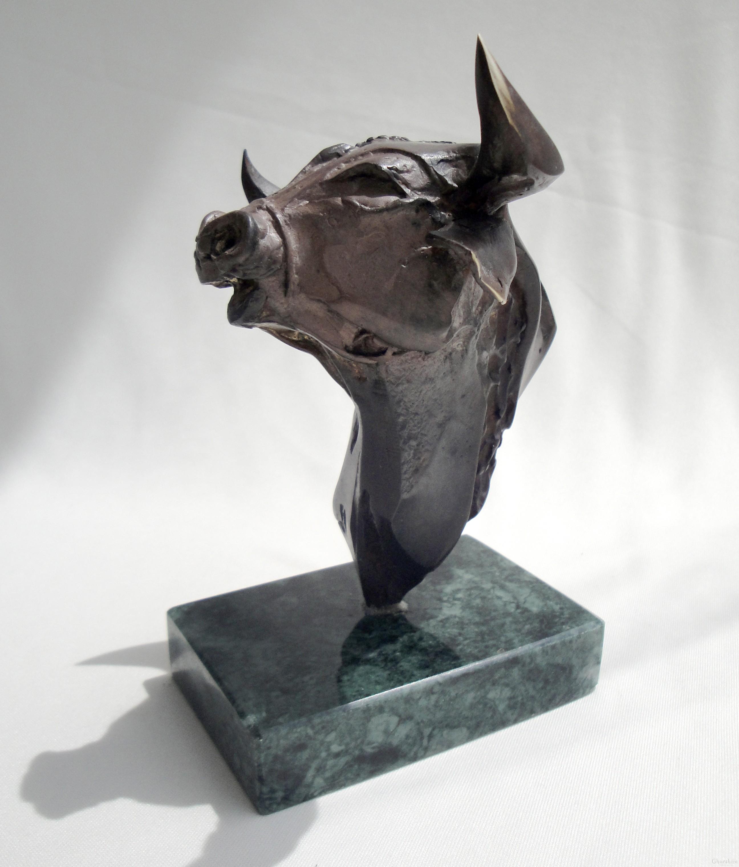 """Металопластика """"глава на бик"""""""