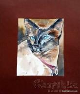 Painting ''Aquarelle - Cat'' 6