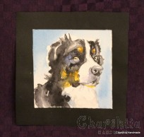 Painting ''Aquarelle - Dog'' 1
