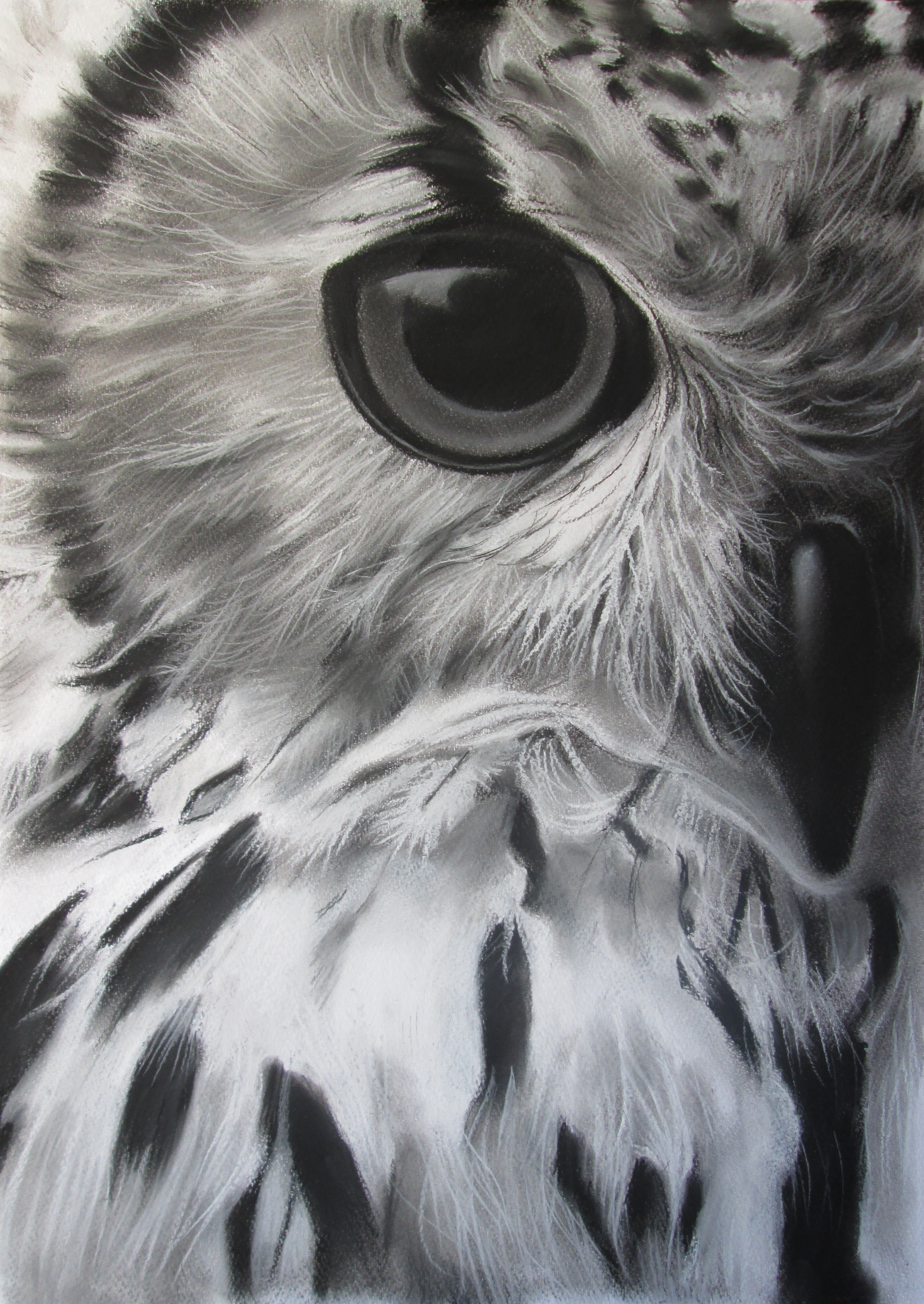 "painting ""Owl"""
