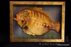 """Painting ''Ceramic fish"""" 5"""